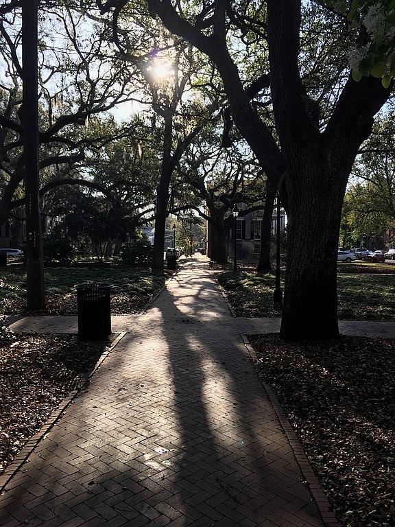 Savannah's Secret Burial Grounds - Photo